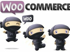 Overview of WooCommerce – eCommerce Software
