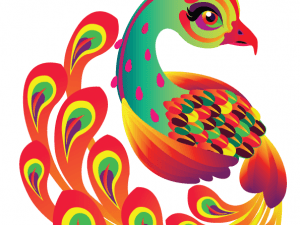 Colorful Peacock T-shirt Design