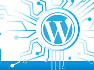 Why Use WordPress? – Is it really that much better than the alternatives?